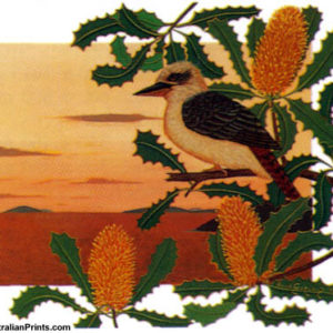 Anna Garland, Kookaburra on Tropical Banksia