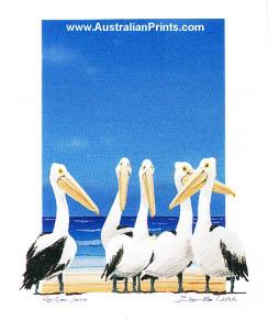 Bernie Walsh, Pelican Pose