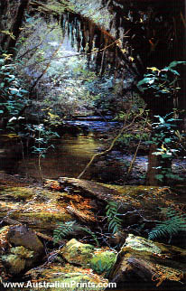Colina Grant, Rainforest - Tranquil