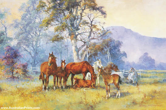 d'Arcy Doyle, The Yearlings