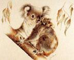 Geraldine Simmons, Koala